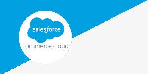 Salesforce Commerce Cloud Platform