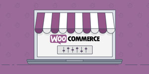 WooCommerce eCommerce WordPress Plugin